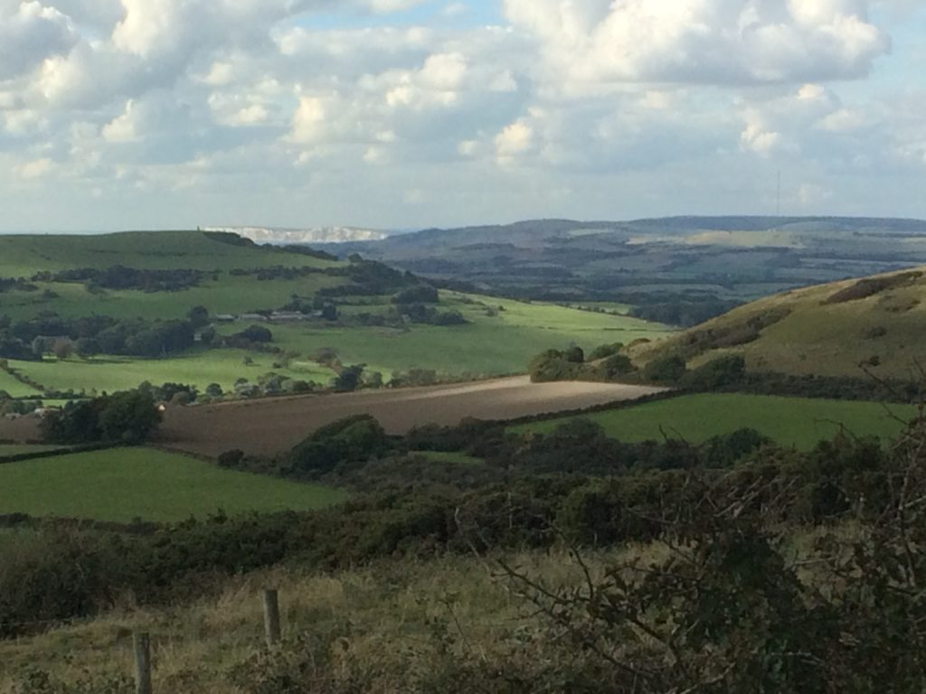 View of West Wight from the Top of St Martins Down