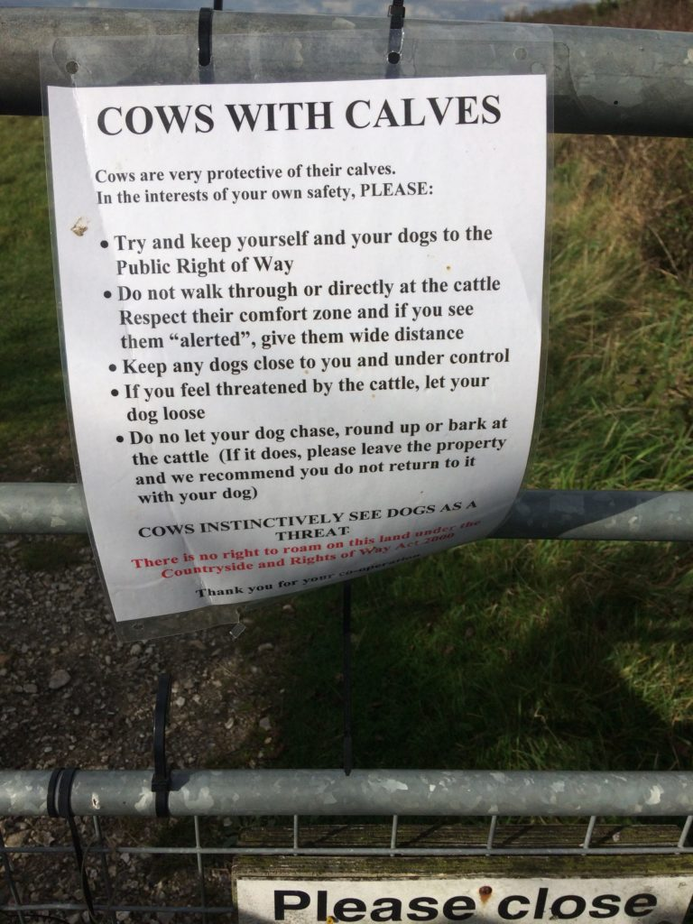 Cows and Calves Warning Notice